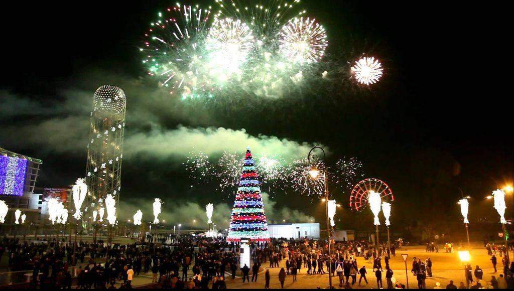 голуби вьют празднование нового года тур по россии вряд проживет